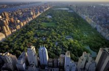 surface totale de Central Park